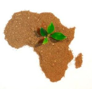 where to invest in africa