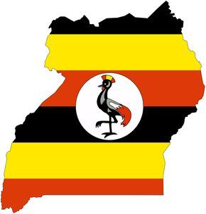 business visas and work permits for uganda