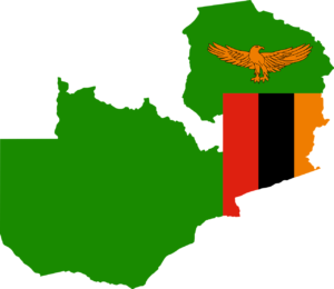 zambian work permits and business visas